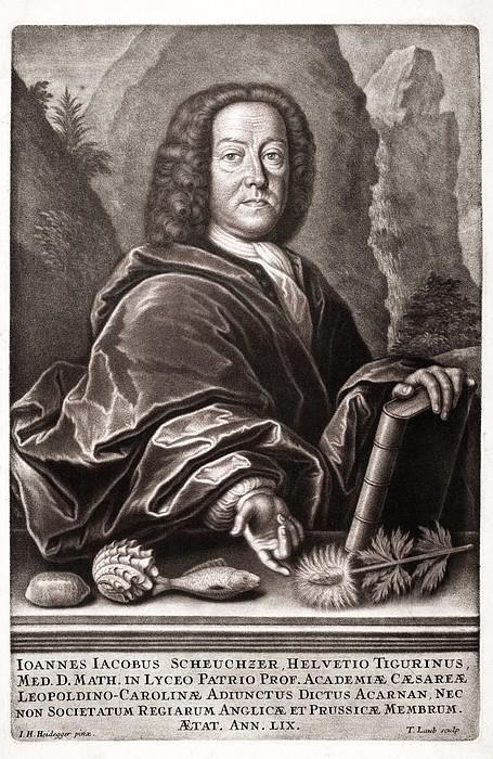Scheuchzer Portrait 17th/18thc Naturalist Print by Paul D Stewart
