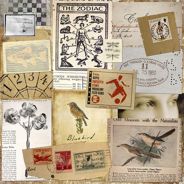 Scrapbook Page Number 1 Print by Carol Leigh