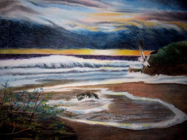 Sea Bird Print by Kathleen Romana