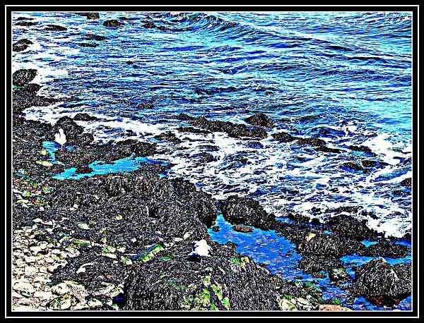 Anand Swaroop Manchiraju - Sea Scape-23