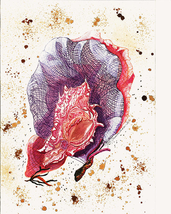 Seafans And Shell Print by Joy Braverman