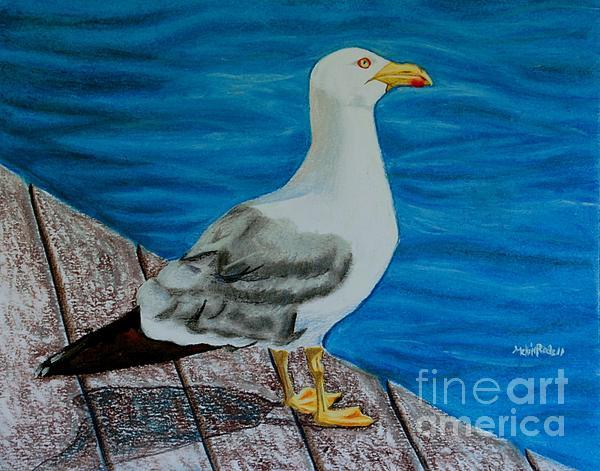 Seagull On The Shore - Gaviota En La Costa Print by Melvin Rodriguez
