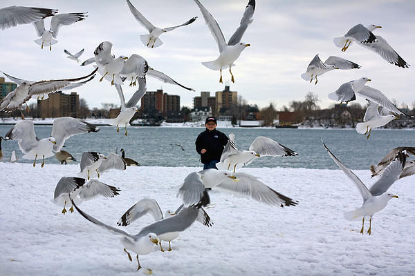 Gordon Dean II - Seagulls In Flight