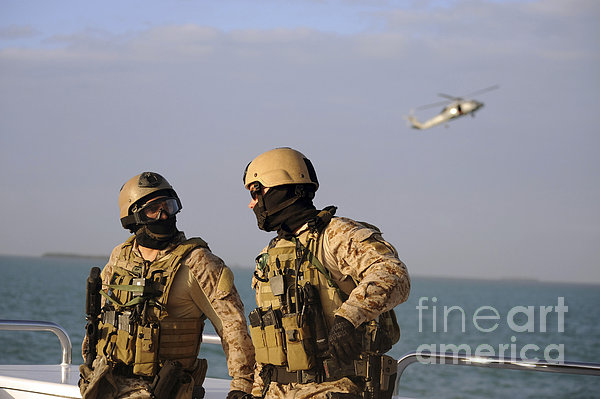 Seals Aboard A Rigid-hull Inflatable Print by Stocktrek Images
