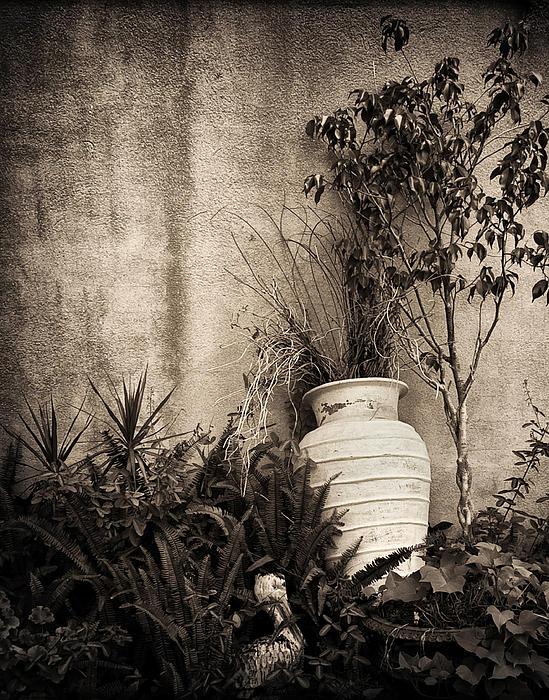 Secret Garden Print by Mario Celzner
