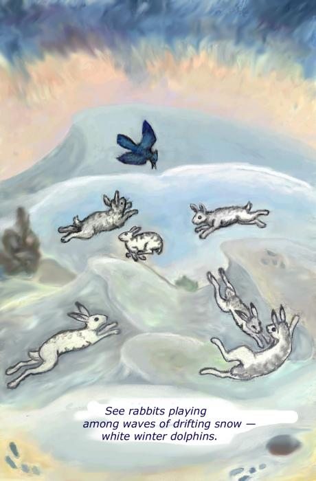See Rabbits Playing Haiku And Illustration Drawing  - See Rabbits Playing Haiku And Illustration Fine Art Print