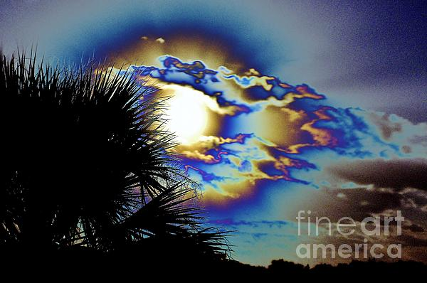 Serious Moonlight Print by Don Youngclaus