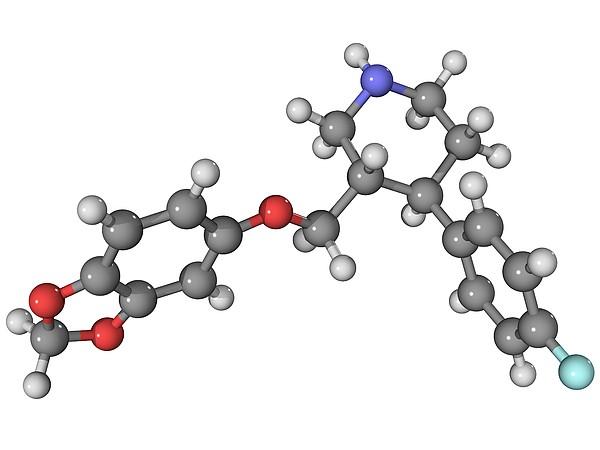 Seroxat Antidepressant Drug Molecule Print by Laguna Design