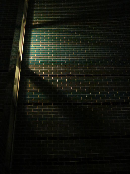 Guy Ricketts - Shadows and Light on a Nocturnal Mosaic