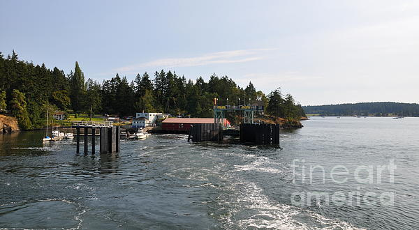 Shaw Island Ferry Terminal  2 Print by Tanya  Searcy
