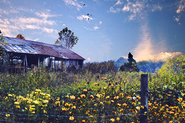 Shed In Blue Sky Print by Walt Jackson