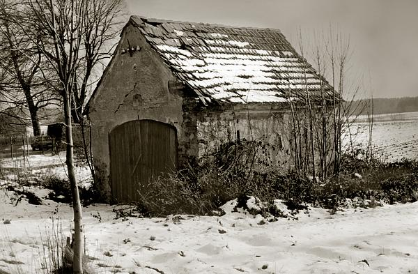 Shed Print by Marcin and Dawid Witukiewicz