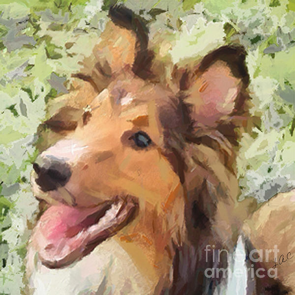 Laurence Canter - Sheltie - May