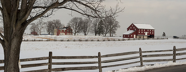 Sherfy Farm In The Snow At Gettysburg Print by Greg Dale