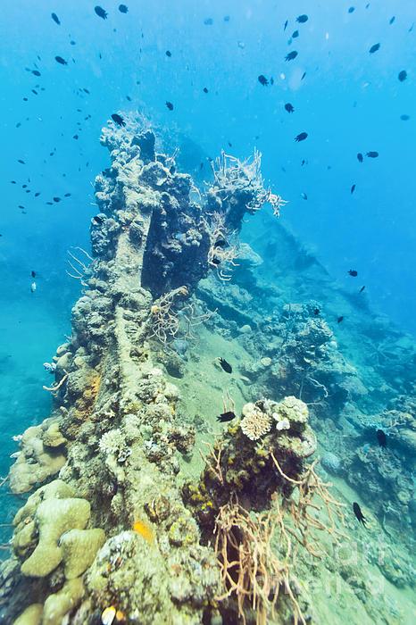 Shipwreck  Print by MotHaiBaPhoto Prints