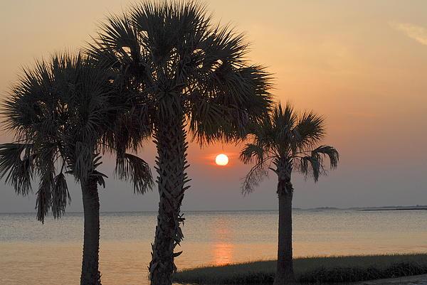 Claire Pridgeon - Shired Island Sunset