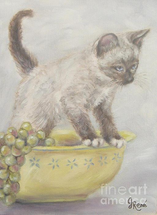 Gayle Rene - Siamese Kitten in a Yellow Bowl