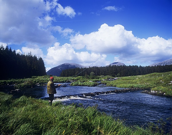 Side Profile Of A Man Fly-fishing In A Print by The Irish Image Collection