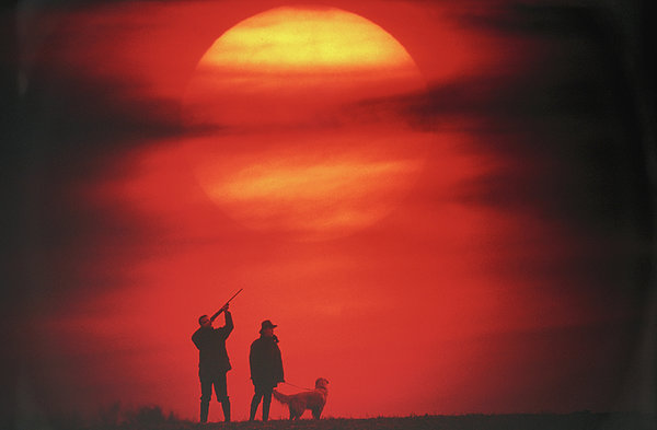 Silhouette Of Couple With Dog, Man Aiming, Sunset Print by David De Lossy
