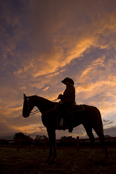 Silhouetted Cowboy Actor On Horseback Print by Ralph Lee Hopkins