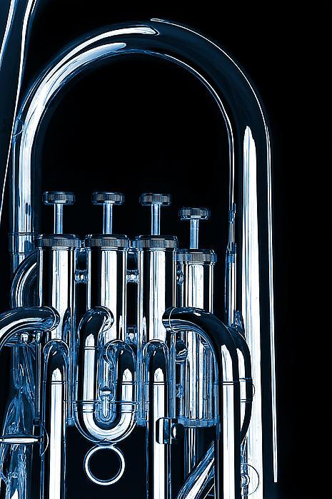Silver Bass Tuba Euphonium On Black Print by M K  Miller