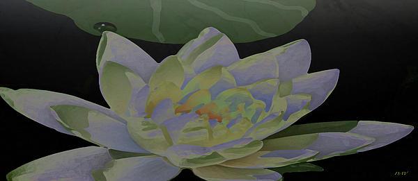 Simple Lily Print by Debra     Vatalaro
