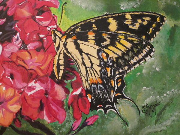 Brenda Morgado - Single Swallowtail Butterfly