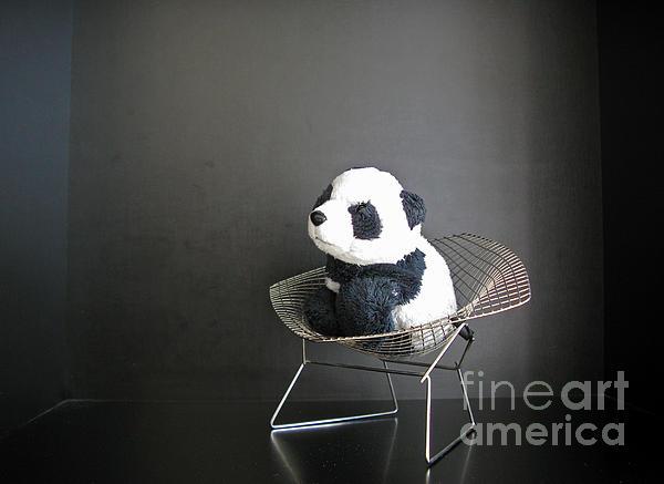 Sitting Meditation. Floyd From Travelling Pandas Series. Print by Ausra Paulauskaite