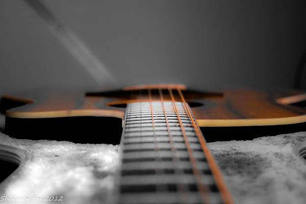 Shannon Harrington - Six String