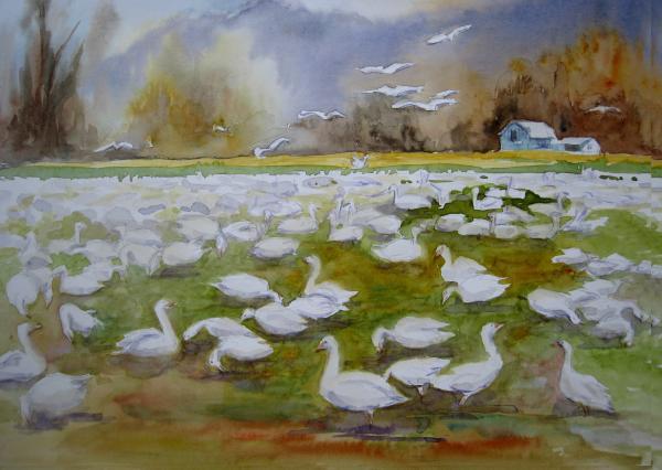 Skagit Geese Painting
