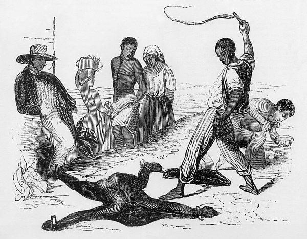 Slave Punishment In The French West Print by Everett