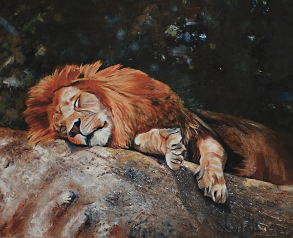 Sleeping Lion By Dustin Curtis