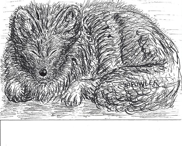 Sleepy Fox Print by John A Fowler