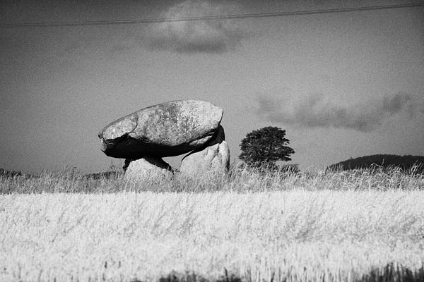 Slidderyford Or Wateresk Dolmen Situated In The Middle Of A Field Of Barley In County Down Northern  Print by Joe Fox
