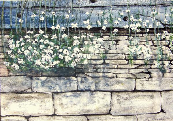 Small White Flowers Print by Terence John Cleary