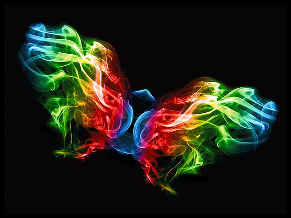 Smoke Butterfly Print by Alice Gosling