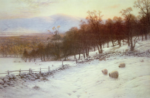 Snow Covered Fields With Sheep Print by Joseph Farquharson