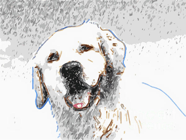 Snow Dog Print by Laura Brightwood