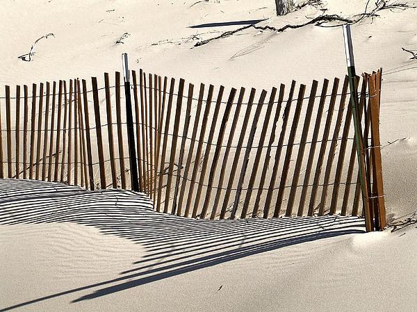 Snow Fence Shadows Print by Richard Gregurich