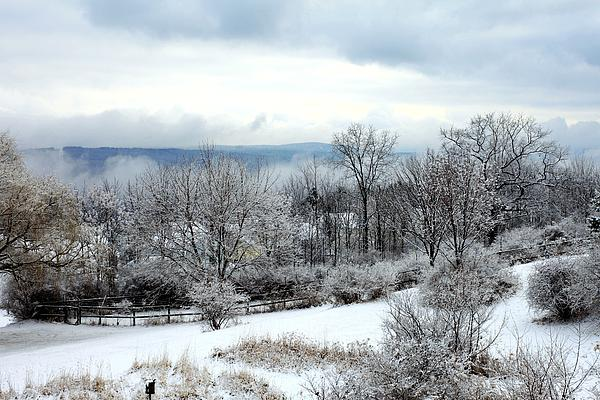 Snow In Winter Ithaca New York Print by Paul Ge