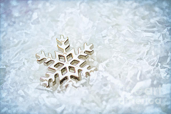 Darren Fisher - Snowflake