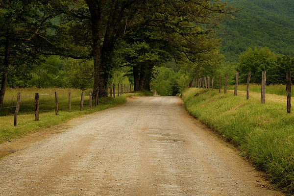 Sparks Lane - Cades Cove Print by Andrew Soundarajan