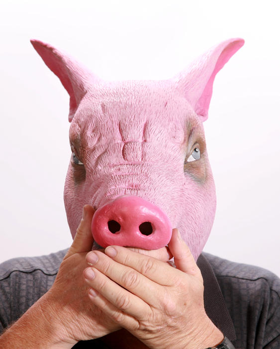 Speak No Swine Flu Print by Michael Ledray