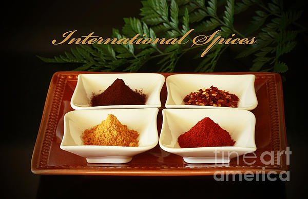 Spices From Around The World Print by Inspired Nature Photography By Shelley Myke