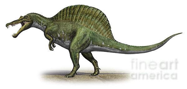 Spinosaurus Aegyptiacus, A Prehistoric Print by Sergey Krasovskiy