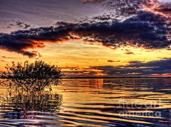 Splitting Sun Print by Kim Shatwell-Irishphotographer