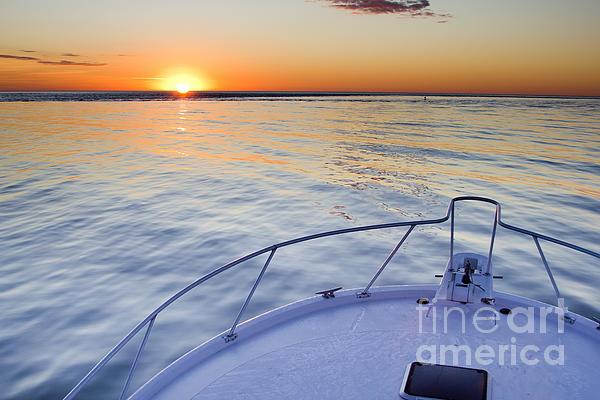 Sportfish Sunrise On The Atlantic Print by Dustin K Ryan
