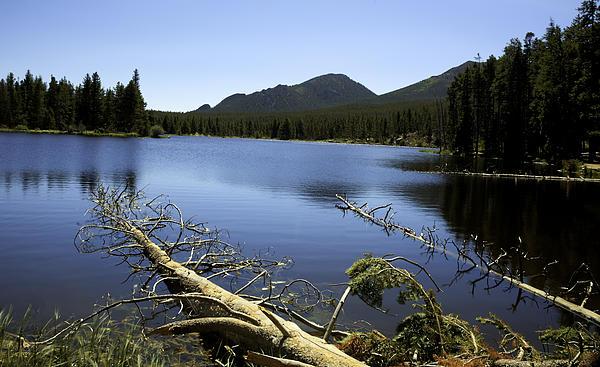 Sprague Lake Rocky Mountain National Park Print by Gary Batha