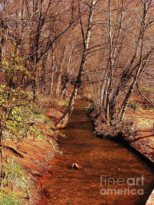 Spring At Red Rock Crossing Print by Marilyn Smith