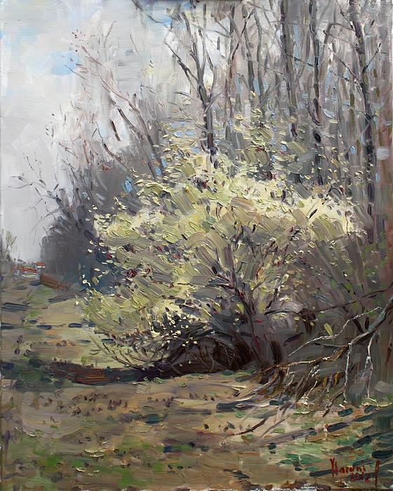 Spring Blossom Print by Ylli Haruni